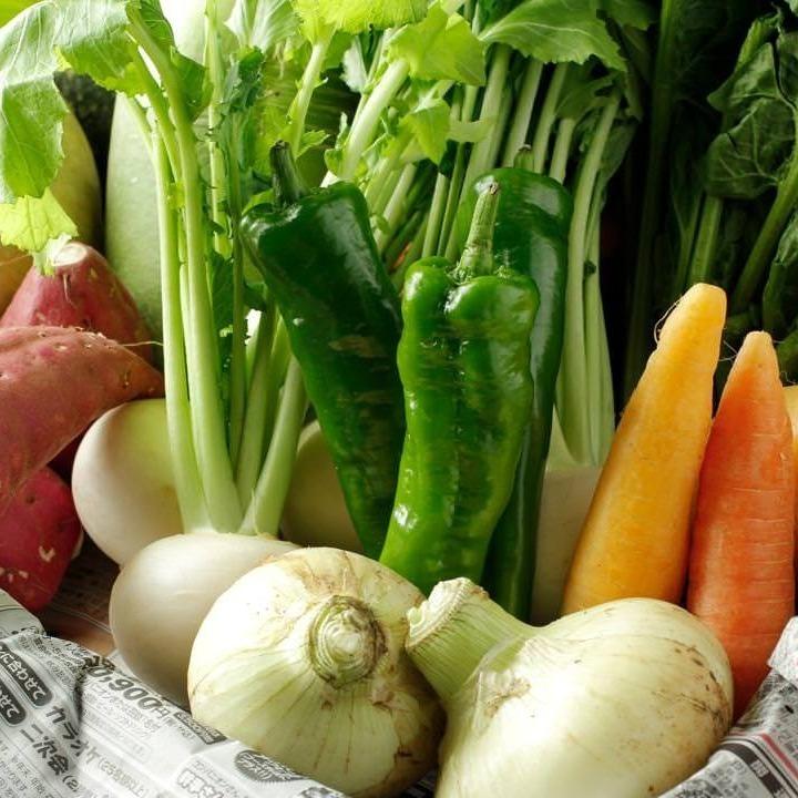 有機蔬菜沙拉直接到Yatsugatake農場的南部的腳