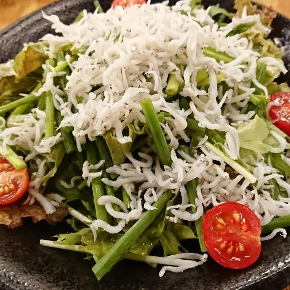 ジャコネギサラダ