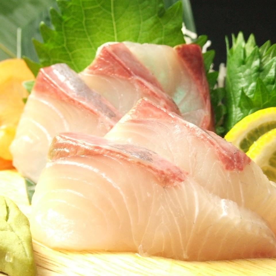 活躍的kampachi生魚片