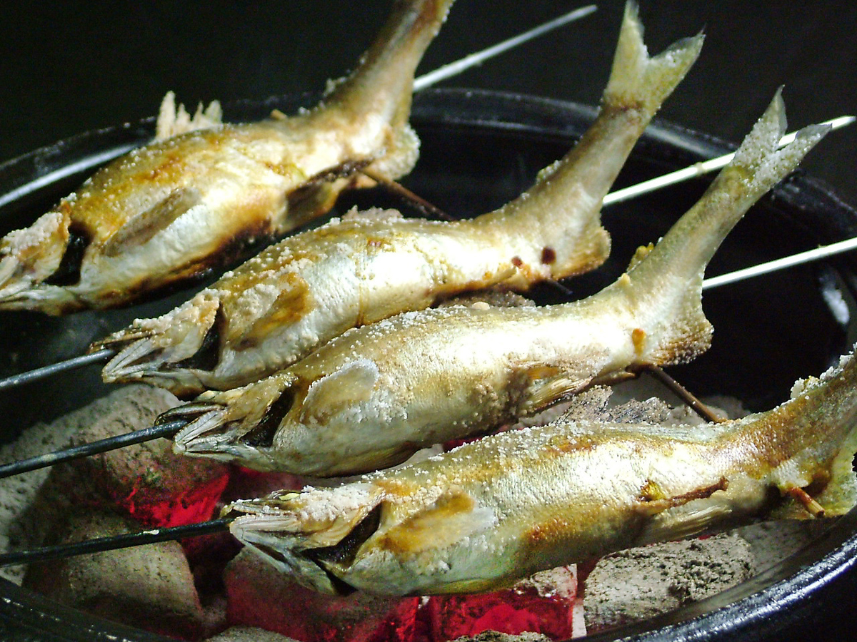 Niigata can also enjoy river fish.From June to the end of September