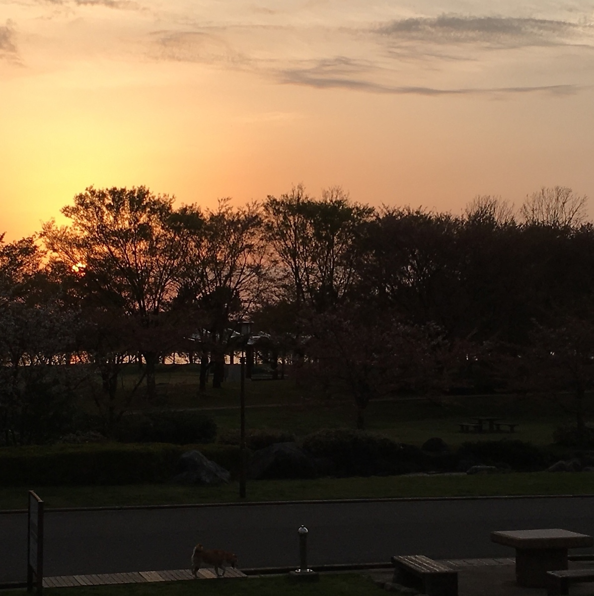 【A time when you feel the flow of time ...】 Spend the end of the day slowly while watching the sunset ...