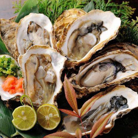 【旬の素材が満載】限定の銀鱈刺し、石巻直送の牡蠣、金華鯖…