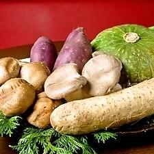 야채 단품