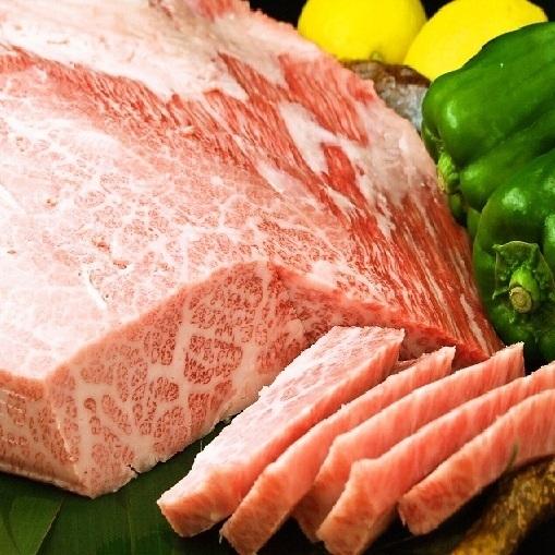 Swine Toro
