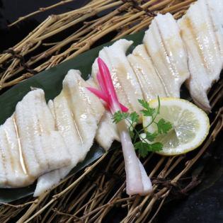 Densuke海鰻生魚片/哈馬烤/蒸/天婦羅
