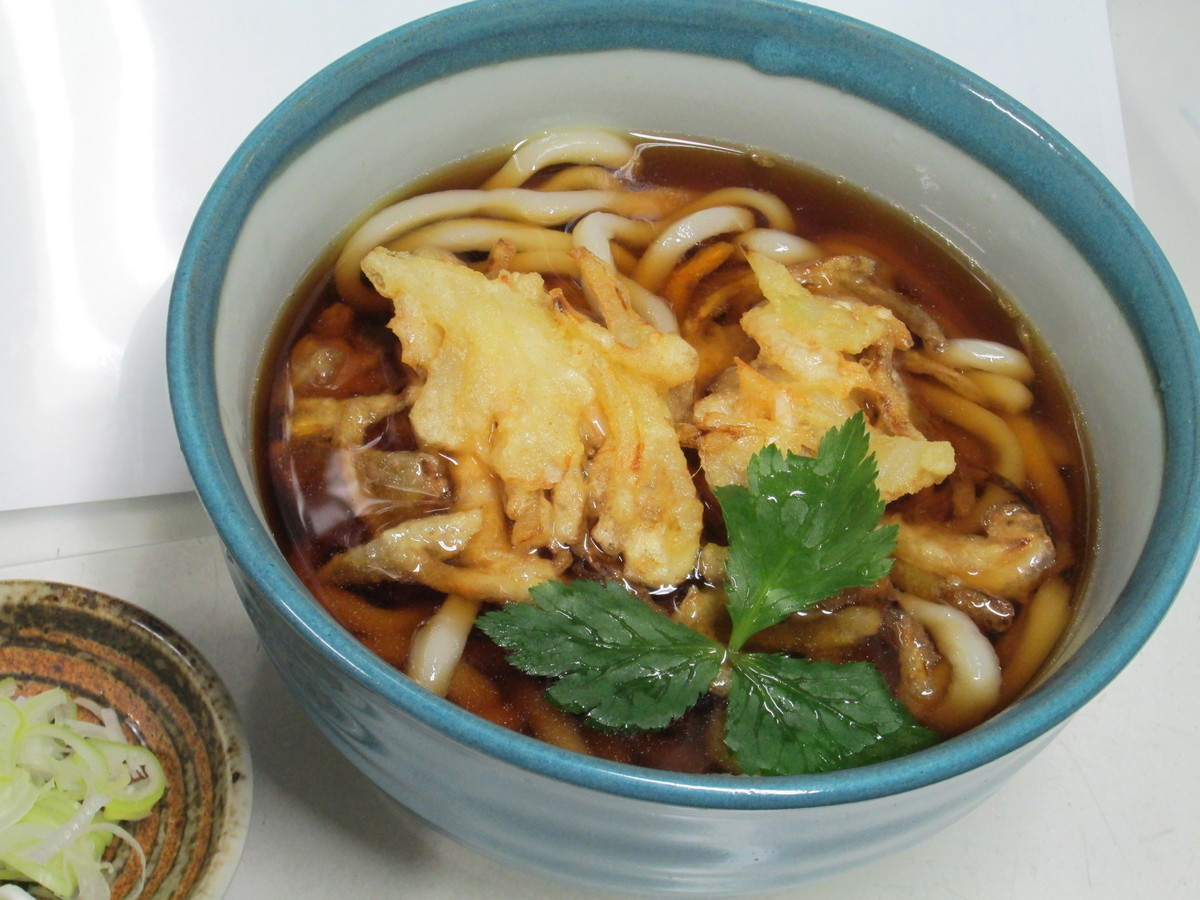 Warm White Deep-fried Udon