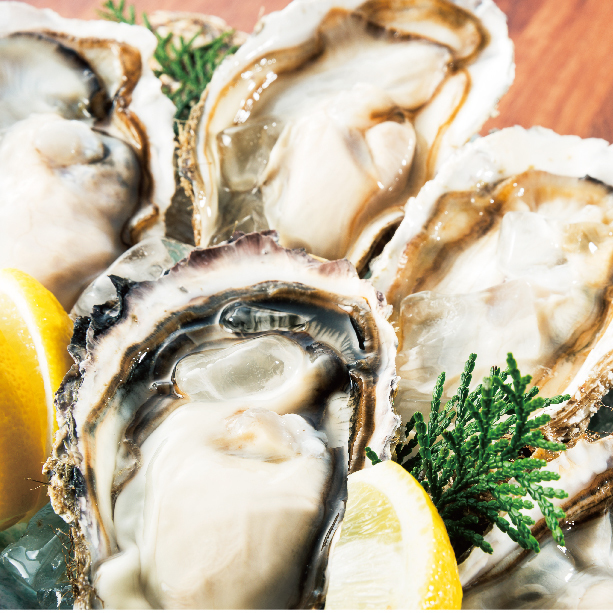 [Carefully selected area] oyster fair <raw oyster / roasting> * Please choose how to eat