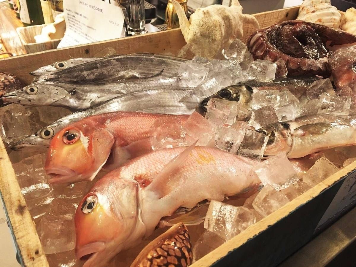 本日の魚と野菜のグリル