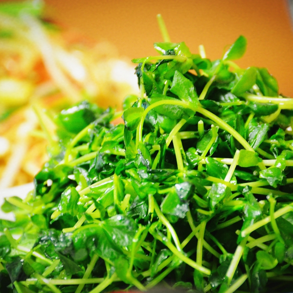 青菜のあっさり炒め