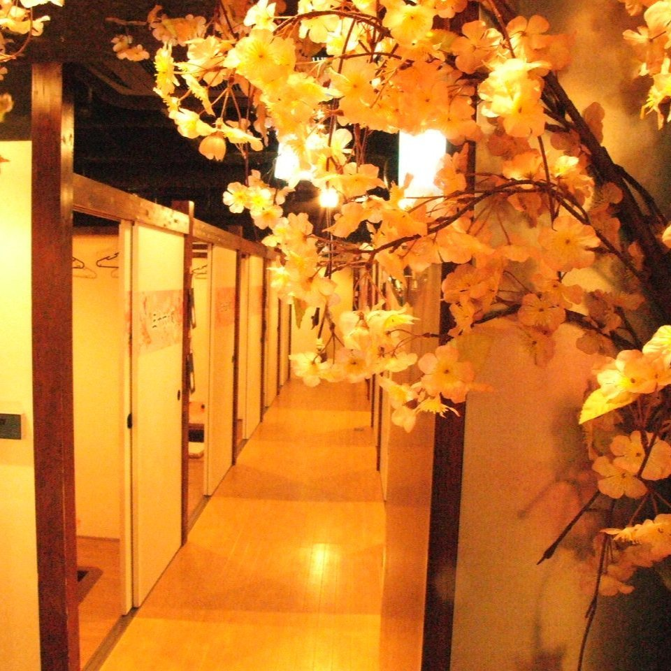 樱花盛开!里面的商店充满了日本的情感