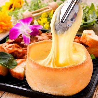 ◆注意度1號◆生長的奶酪是照片genic!Panane雞⇒所有你可以吃☆1480☆