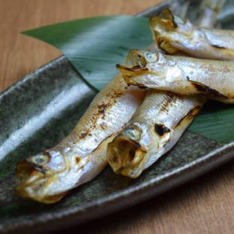 Sakugawa蝦