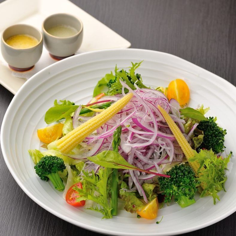 Vegetables Various salad (mustard-flavored dressing)