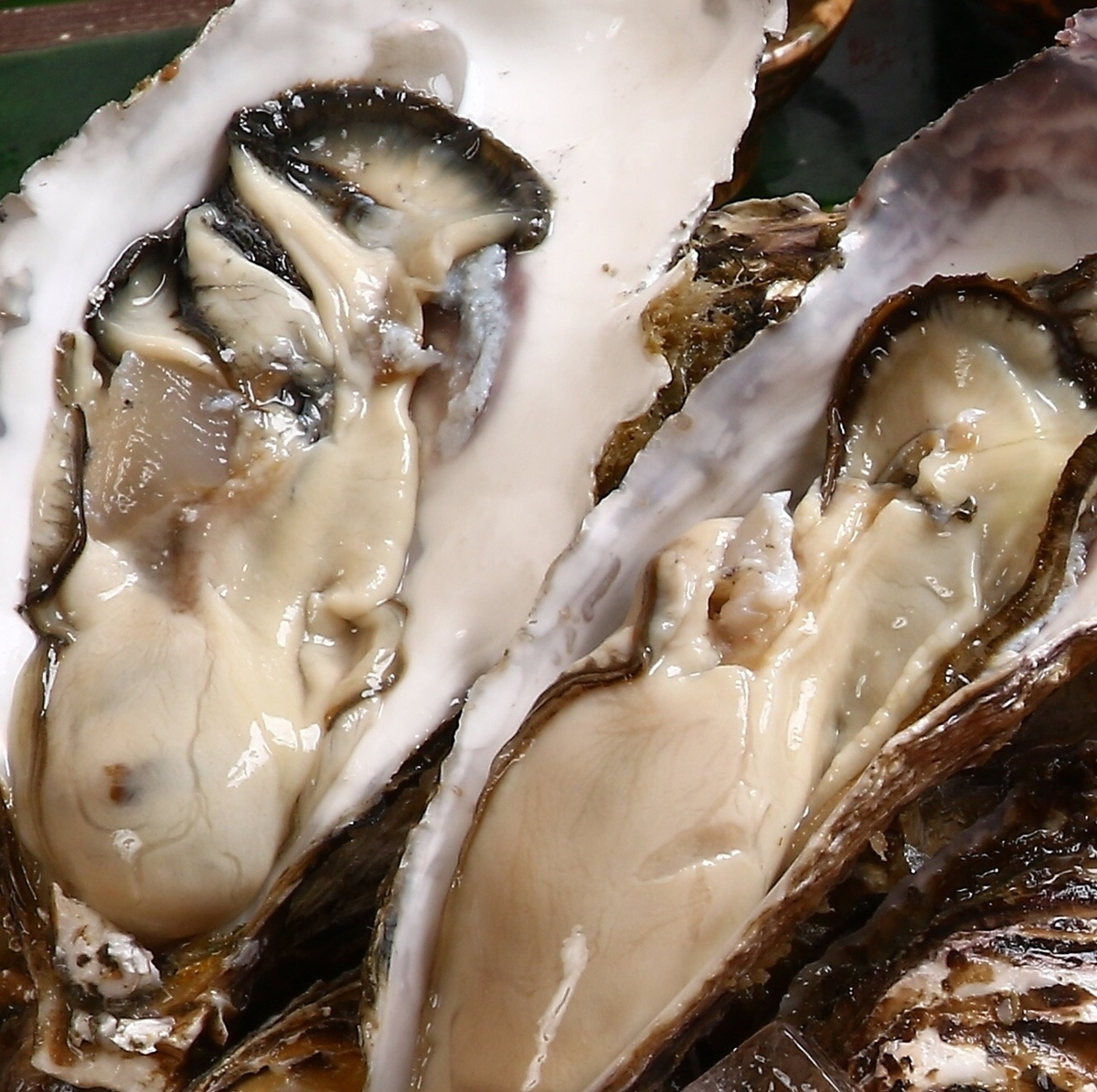 Raw oyster / baked oyster / steamed oyster