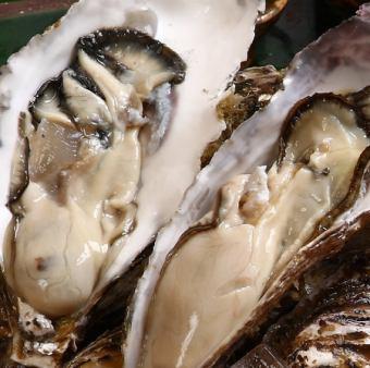 生牡蠣/焼き牡蠣/蒸し牡蠣