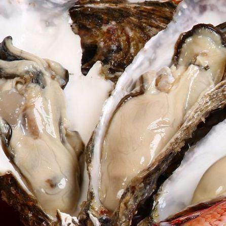 牡蠣は一番いい物を漁港から直送!大きさ・旨味は格別!