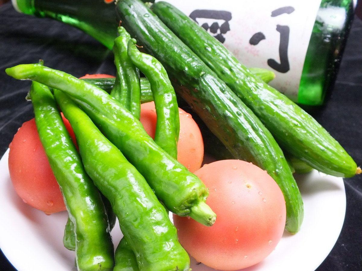 新鮮獲れたての野菜を多く使用☆山海の幸を気軽に楽しんでもらえるお店です♪