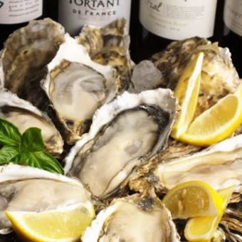 2H drink all you can afford 4980 yen! All-you-can-eat oysters and shurasco !? 【YOLO Oyster party course】