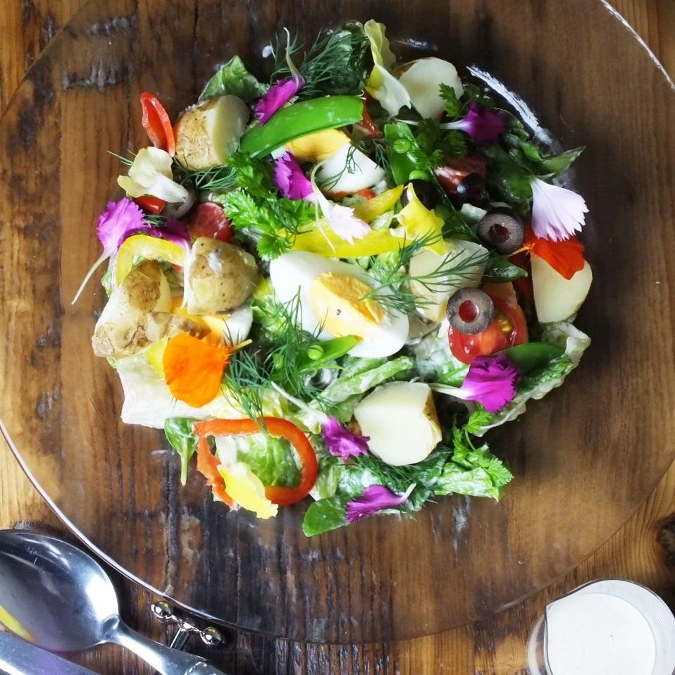 Nice style salad focus style