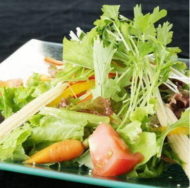 10 items of vegetables and quinoa's healthy salad (standard / half)