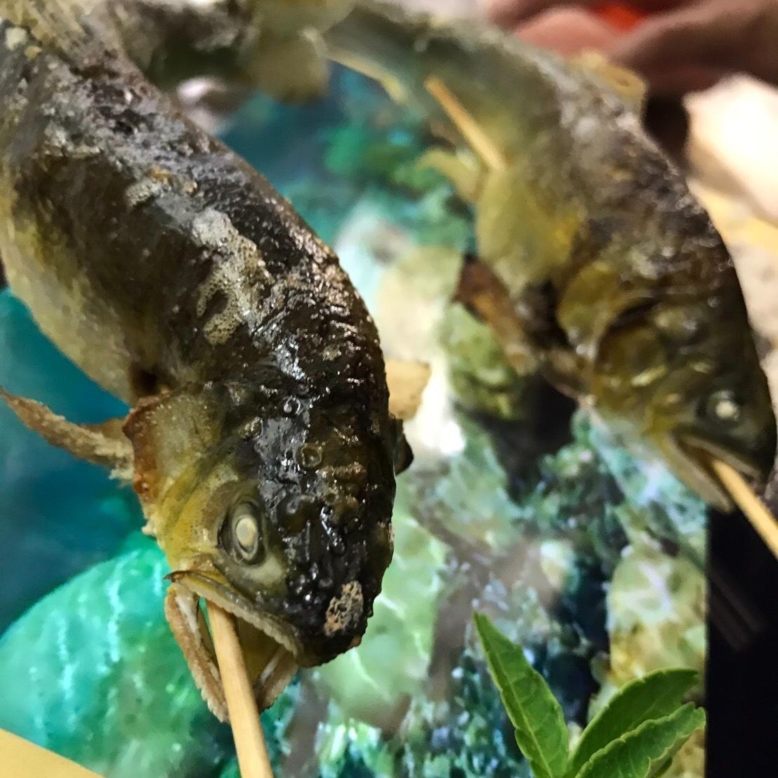 解禁!天然アユの塩焼き串/天ぷら