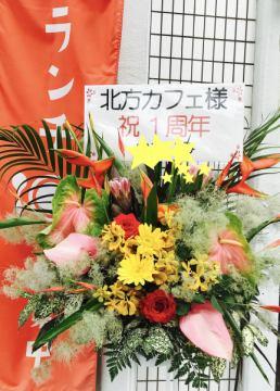 本日6月5日でオープンから1年が経ちましたー(^-^)
