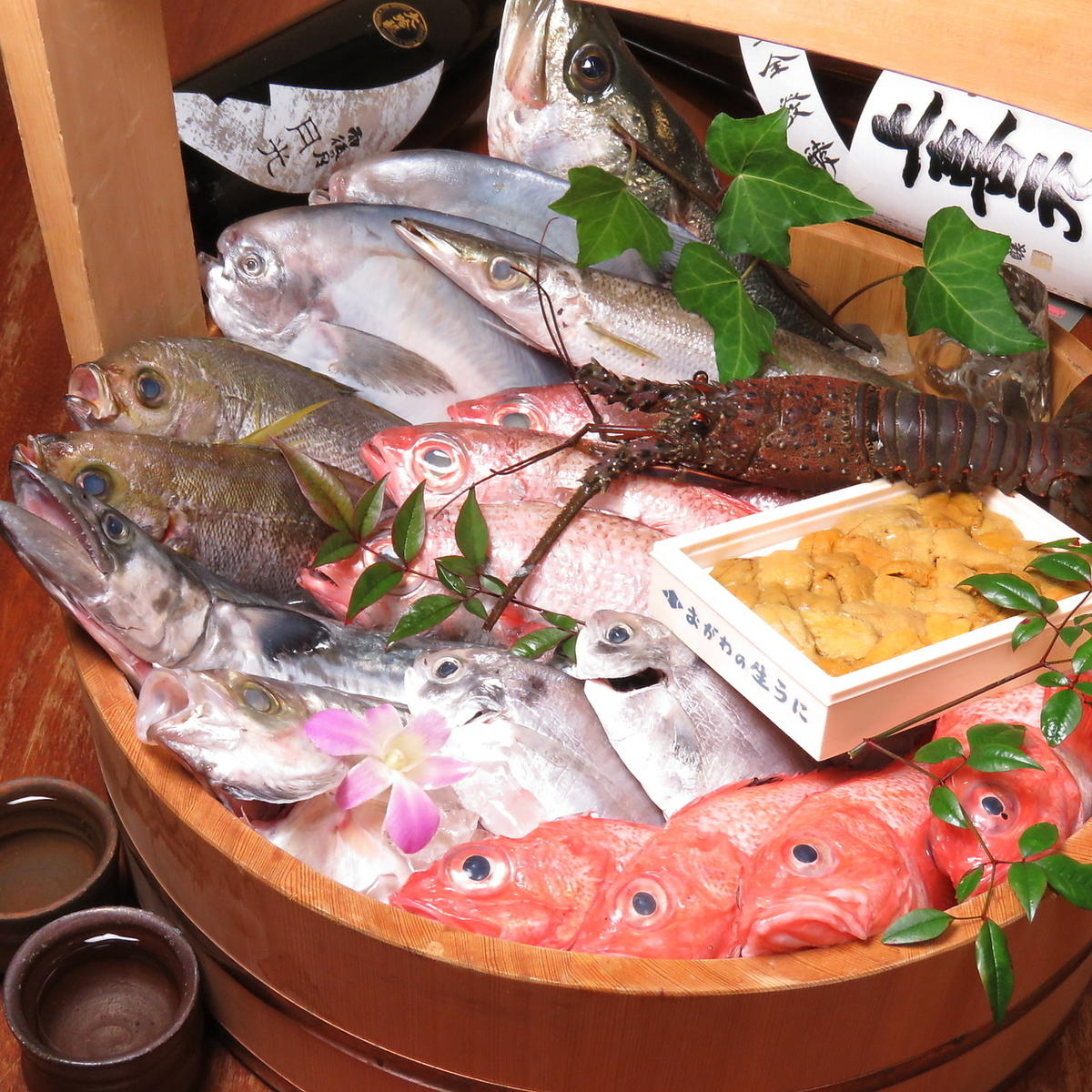 【Fresh produce direct delivery · fresh fish】
