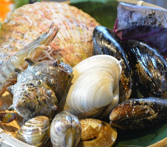 【Origin direct delivery】 Choice to worry about the shellfishes in front!