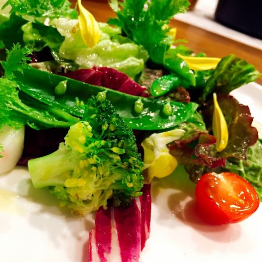 【Machi diner trial course 2980 yen】 Monday to Thursday three pair limited course (season / drinking party / girls party / date)