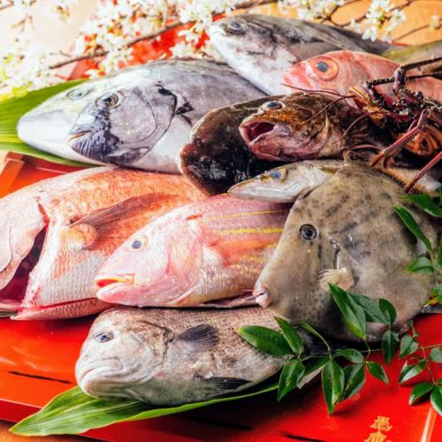 【産地直送】新鮮魚介や熊野牛など紀州食材が満載