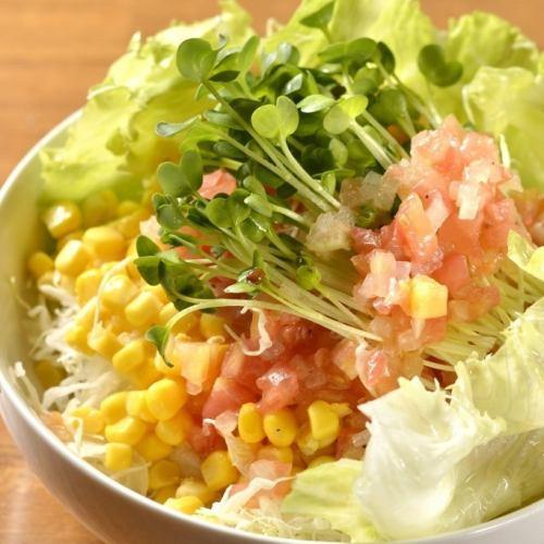 新京サラダ