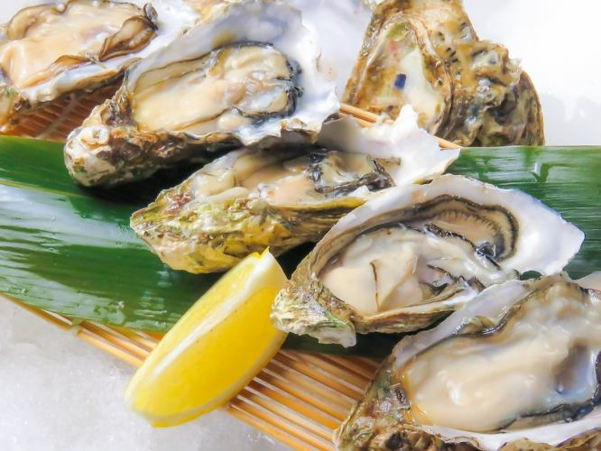 【Drink Included】 Mesa Oyster Course 【120 minutes】