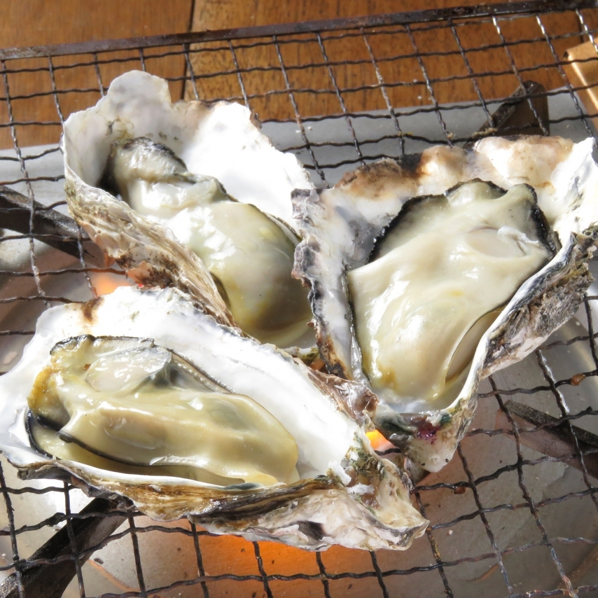 About 10 Hiroshima oysters 1 kg (baked or steamed)