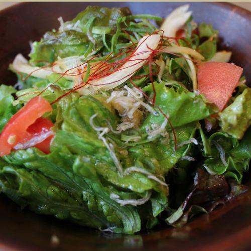 otodo手捲和番茄的日式沙拉