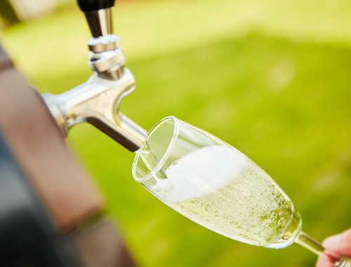 【NEW】 生樽スパークリングワイン(グラス) 赤、白