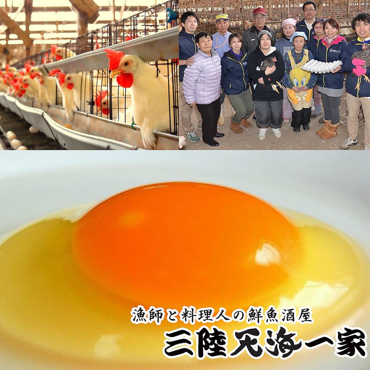 烤!Shiraishi竹鸡蛋yaki