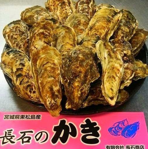 【Yuutsu Ishinomaki·直接从Higashi Matsushima-hama渔港!】三陆新鲜牡蛎