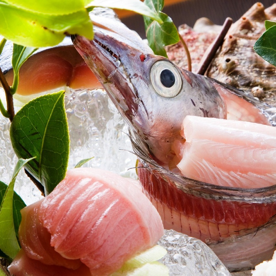 Fish dishes with excellent freshness