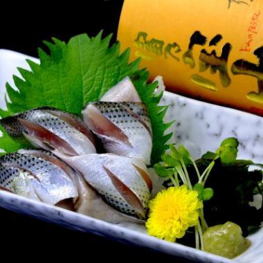 柏鱼市场的鲜鱼
